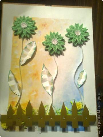 Зелёные цветы фото 2