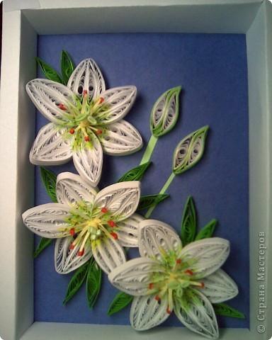 Опять лилии и спасибо Пылинке за мк! фото 1