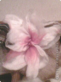 орхидейка фото 1