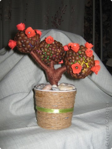Кофейно-розовое дерево фото 2