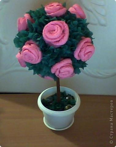 Моё дерево