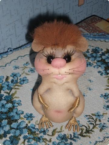 Сегодня проснулась с мыслю, что мне просто необходимо попробовать сделать хомячка - малявку!!! фото 2