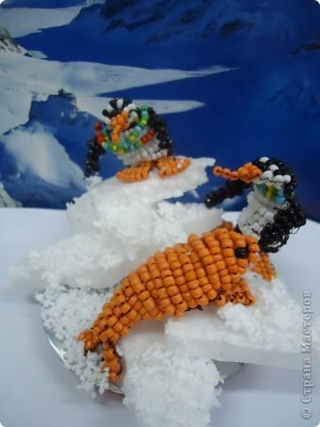 Там ,где всегда снега... фото 4