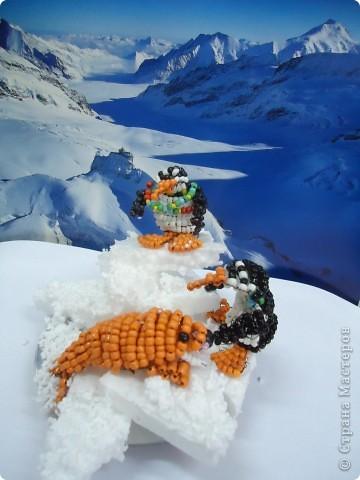 Там ,где всегда снега... фото 1