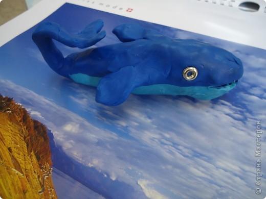 Чудо-юдо рыба кит фото 2