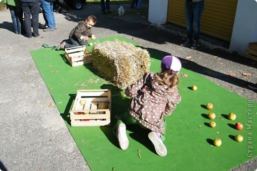 Яблочный праздник. Октябрь 2010 фото 15