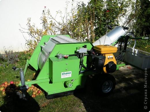 Яблочный праздник. Октябрь 2010 фото 19