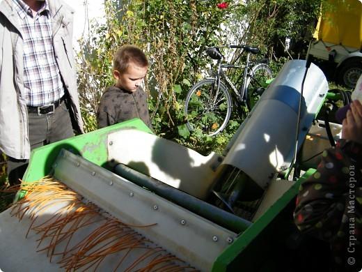Яблочный праздник. Октябрь 2010 фото 20