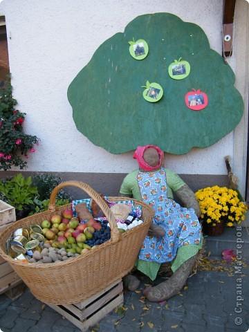 Яблочный праздник. Октябрь 2010 фото 1