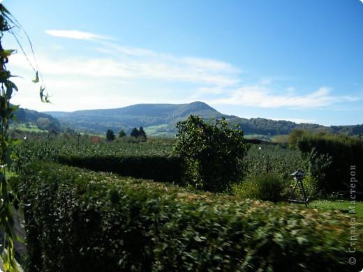 Яблочный праздник. Октябрь 2010 фото 26