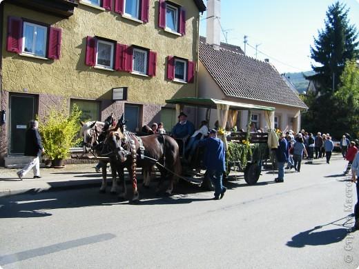 Яблочный праздник. Октябрь 2010 фото 33