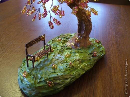 Скамейка и дерево в приближенном виде. фото 1