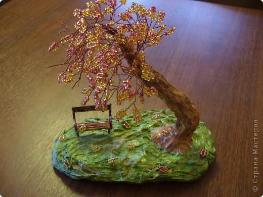 Скамейка и дерево в приближенном виде. фото 2