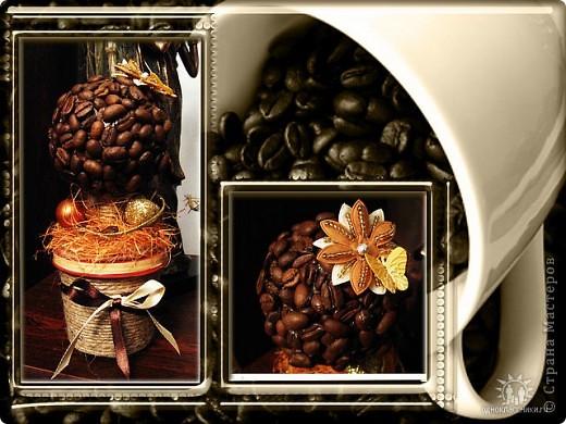 """Чашечка кофе - поднять настроение, пол шоколадки - заесть невезение. Этот проверенный вкус горько-сладкий словно мне шепчет: """"Все будет в порядке!""""    Люблю кофе. Захотела сделать кофейное деревце. Вот каким оно у меня получилось. фото 2"""