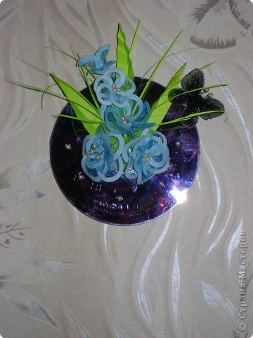 Волшебные цветы фото 10