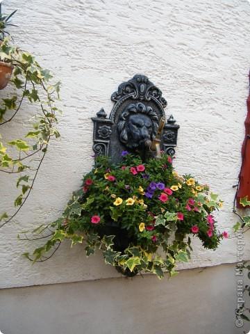 Гельнхаузен (Gelnhausen) фото 9
