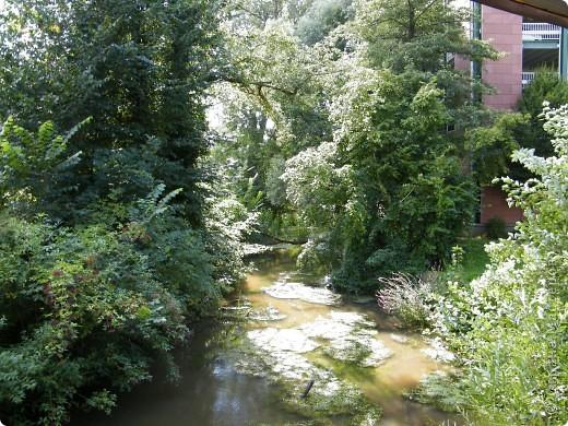 Гельнхаузен (Gelnhausen) фото 5