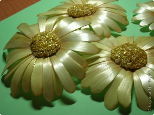 Делая ромашки для подарка к 8 марта решила показать вам поэтапно как делаются самые простые цветы из соломки с приданием полуобъема. МК для начинающих, кто еще не умеет работать с соломкой, поэтому все подробно.  фото 16