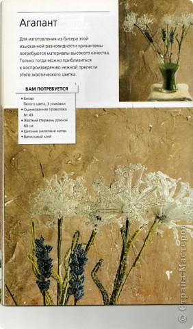 Хризантемы сделаны по схеме из книги Донателла Чиотти. фото 2