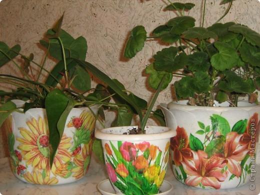 Мои первые работы. Горшочки для цветов украшены и ждут переезда на балкон.  фото 1