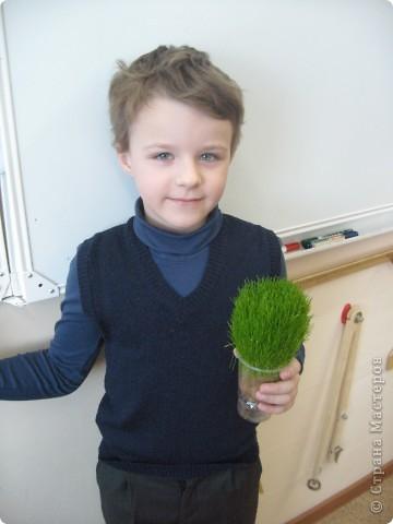 """Сделать такого """"травянчика"""" предложил нам ученик 2 класса """"А"""" ЦО №1883 Ковальский Даня. Идея нам очень понравилась! С ребятами на уроке труда мы его сделали, потом поливали...и вот что получилось! фото 1"""