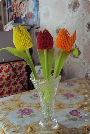 Тюльпаны!