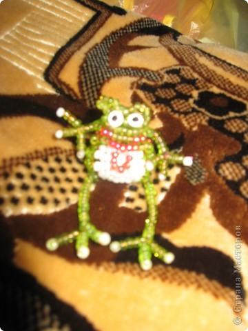 лягушонокизбисера