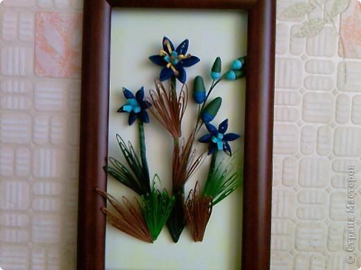 это то же синие цветы