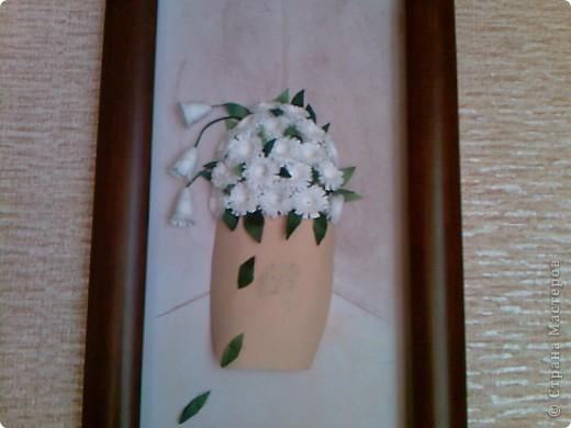 это цветы в горшке.