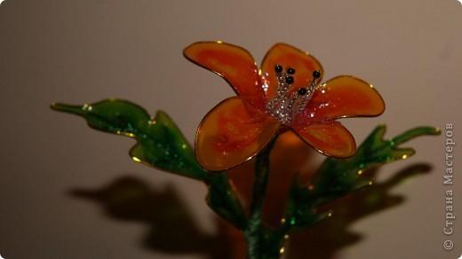 как в сказке светится цветочек и исполняет все жилания