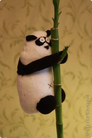 Вот пандочку сшила, чтобы бамбук на столе смотрелся не так одиноко. фото 1