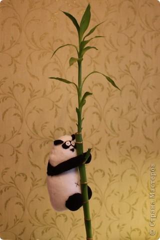 Вот пандочку сшила, чтобы бамбук на столе смотрелся не так одиноко. фото 2
