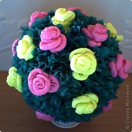 Розы по МК Олисандры