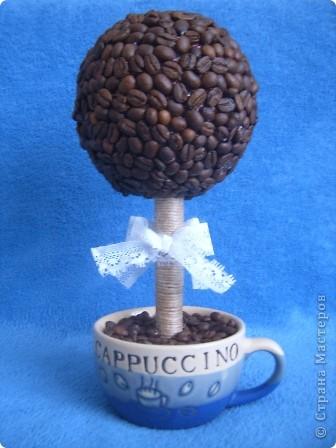 По МК Олисандры http://sashin-mir.blogspot.com/2011/01/blog-post_21.html сделали с Лизой кофейное дерево. фото 2
