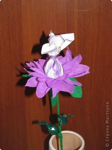 Такие разные сладкие цветы фото 13
