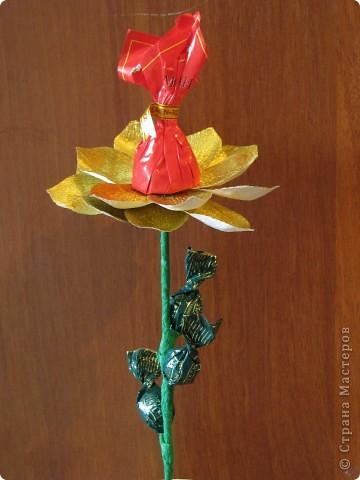 Такие разные сладкие цветы фото 17