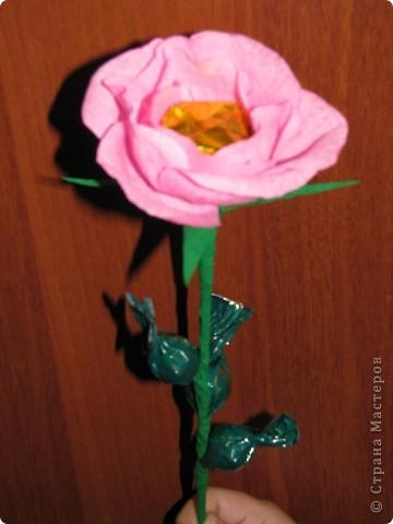 Такие разные сладкие цветы фото 2
