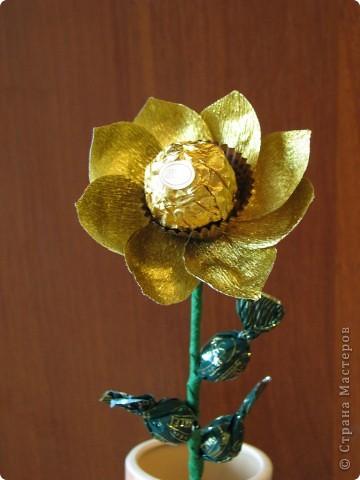 Такие разные сладкие цветы фото 27