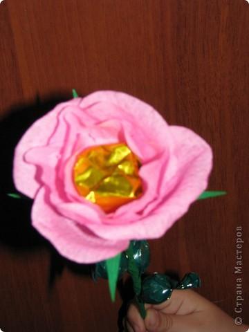 Такие разные сладкие цветы фото 3
