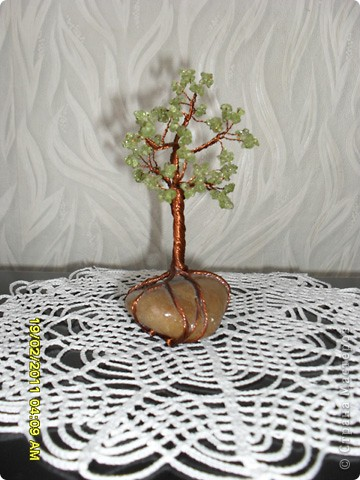 Мое маленькое дерево фото 1