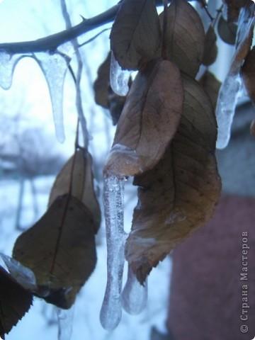 Зима фото 7