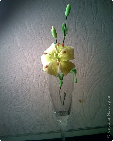 моя лилия,спасибо SVET1301 за вдохновение! фото 2