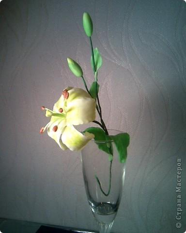 моя лилия,спасибо SVET1301 за вдохновение! фото 1