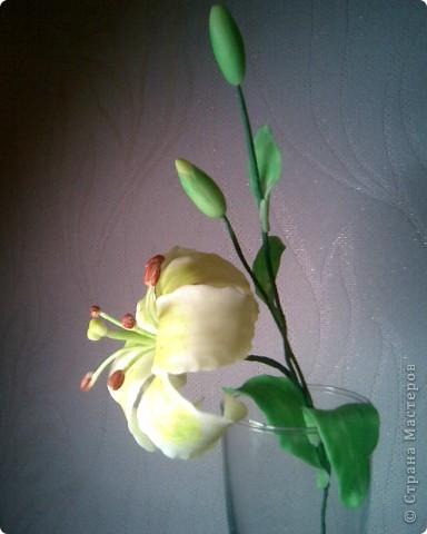 моя лилия,спасибо SVET1301 за вдохновение! фото 4