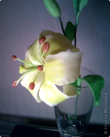 моя лилия,спасибо SVET1301 за вдохновение! фото 3