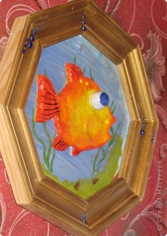 рыбка фото 5