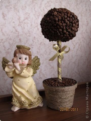 моя мечта осуществилась.....теперь у меня есть ароматное дерево!!!!!