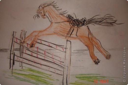 Гнедая лошадь фото 1