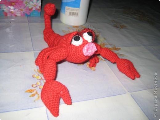 Вот такую скорпионшу связала я не День рождение Лёле своей.Автор игрушки yuliya-kinsfater ,правда оформила чуть по своему.. размер от мордочки до кончика хвоста 27 см. фото 2