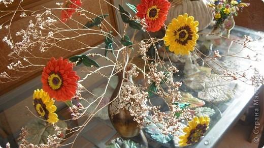 Циния-воплощение неброской красоты органического сада в самом его расцвете. фото 8